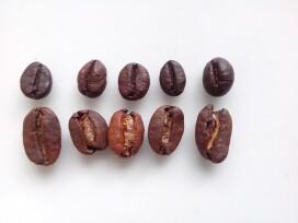 Cafeti re r parer philips saeco qui ne fait plus couler le caf commentre - Cafetiere qui moud le cafe en grains ...